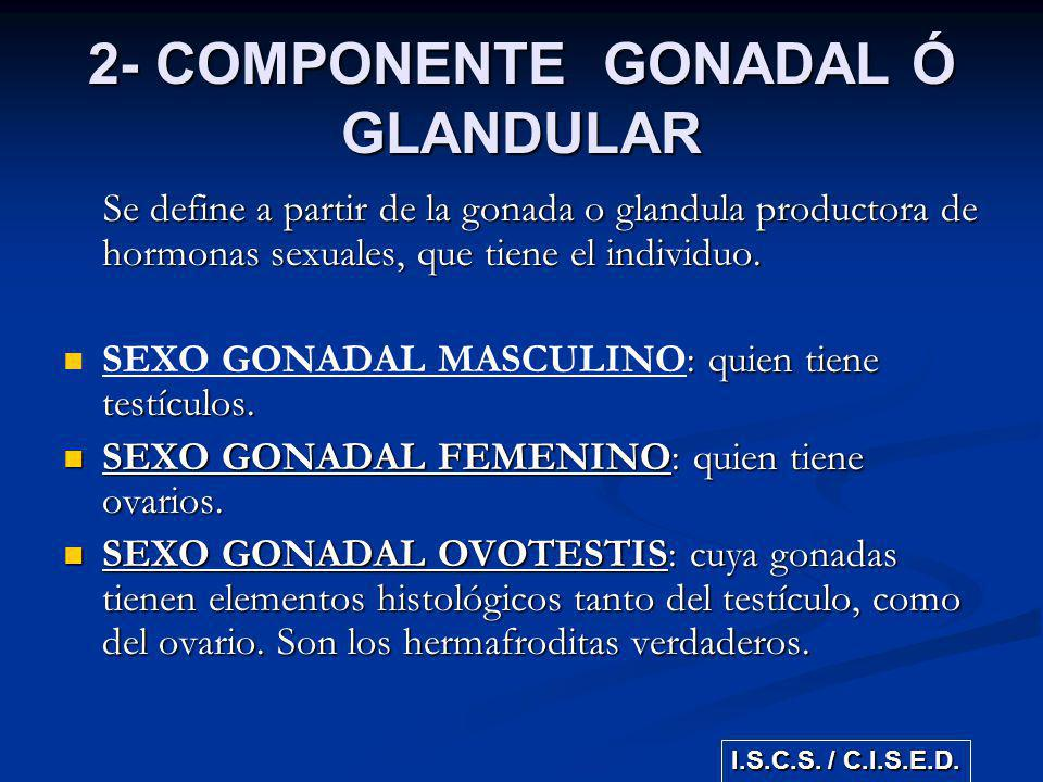 2- COMPONENTE GONADAL Ó GLANDULAR