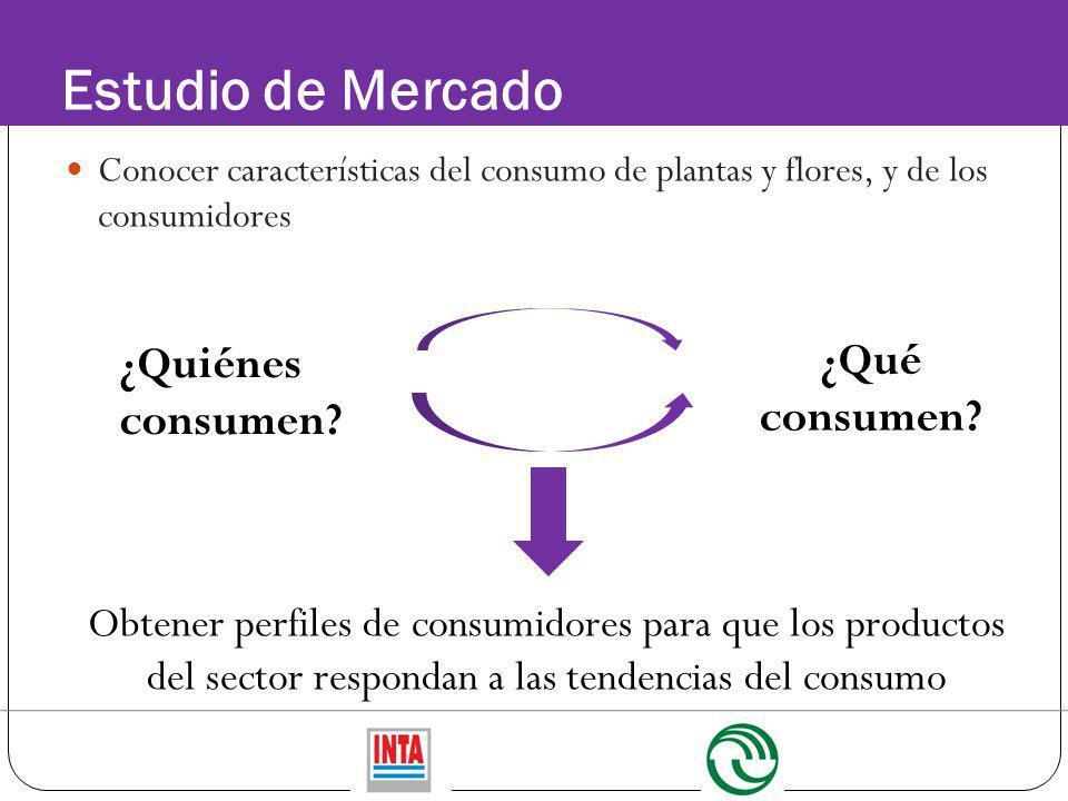 Estudio de Mercado ¿Qué consumen ¿Quiénes consumen