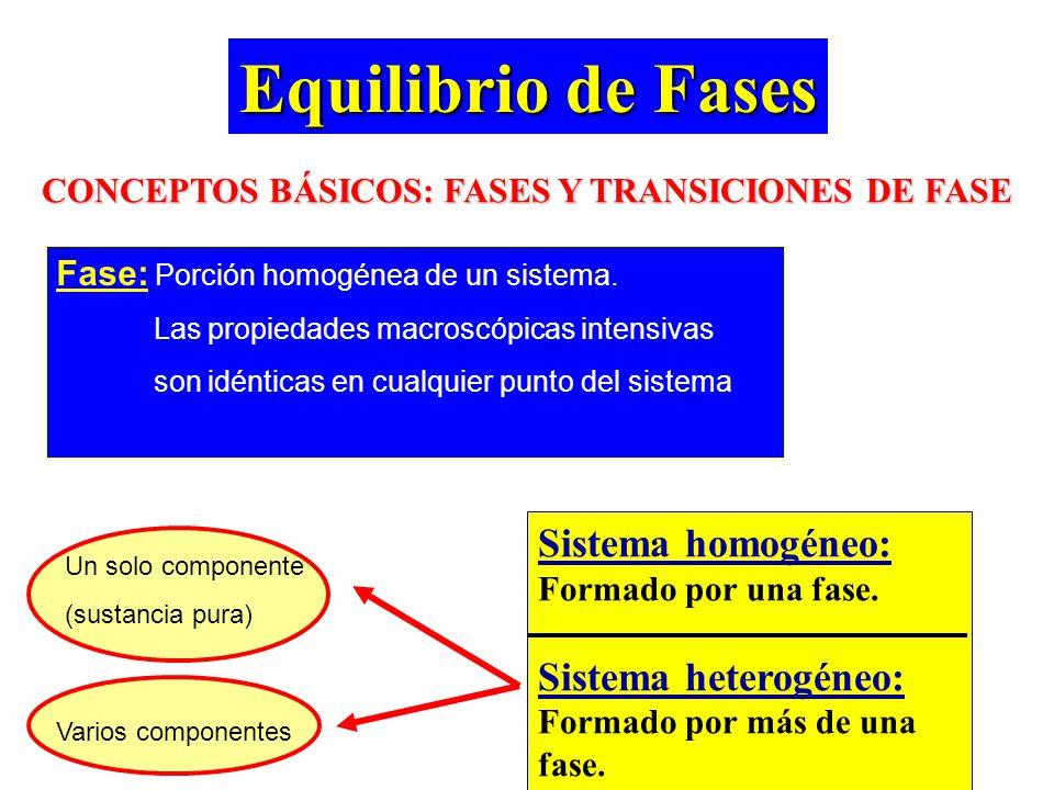 CONCEPTOS BÁSICOS: FASES Y TRANSICIONES DE FASE