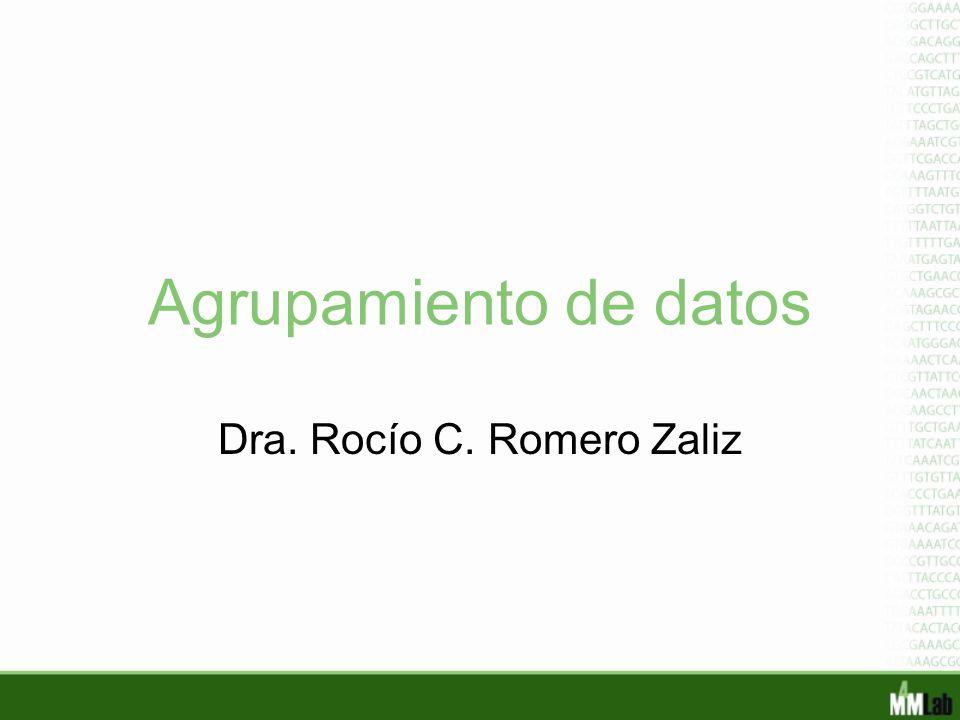 Dra. Rocío C. Romero Zaliz
