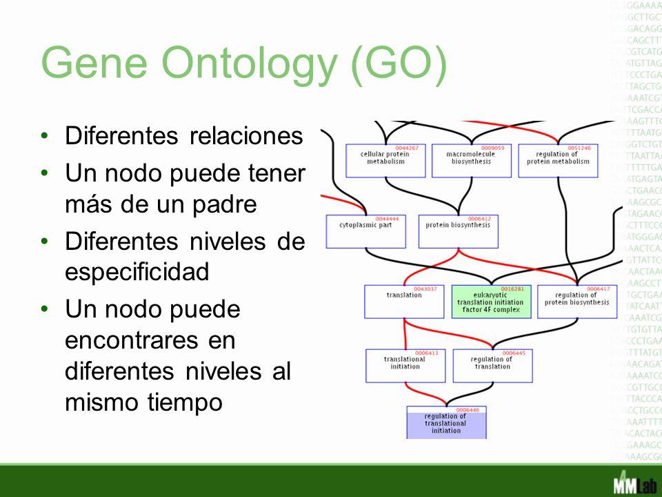 Gene Ontology (GO) Diferentes relaciones