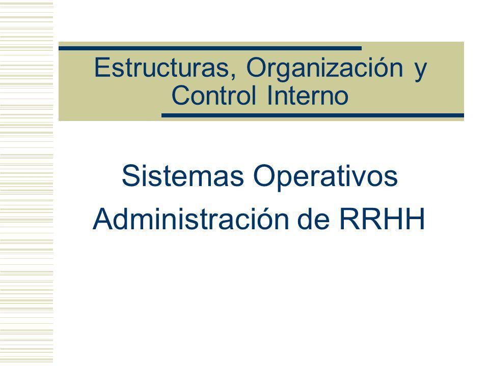 Estructuras, Organización y Control Interno