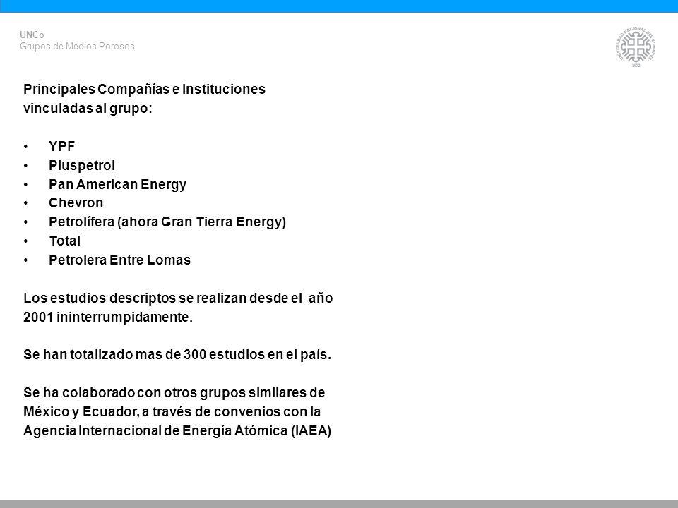 Principales Compañías e Instituciones vinculadas al grupo: YPF
