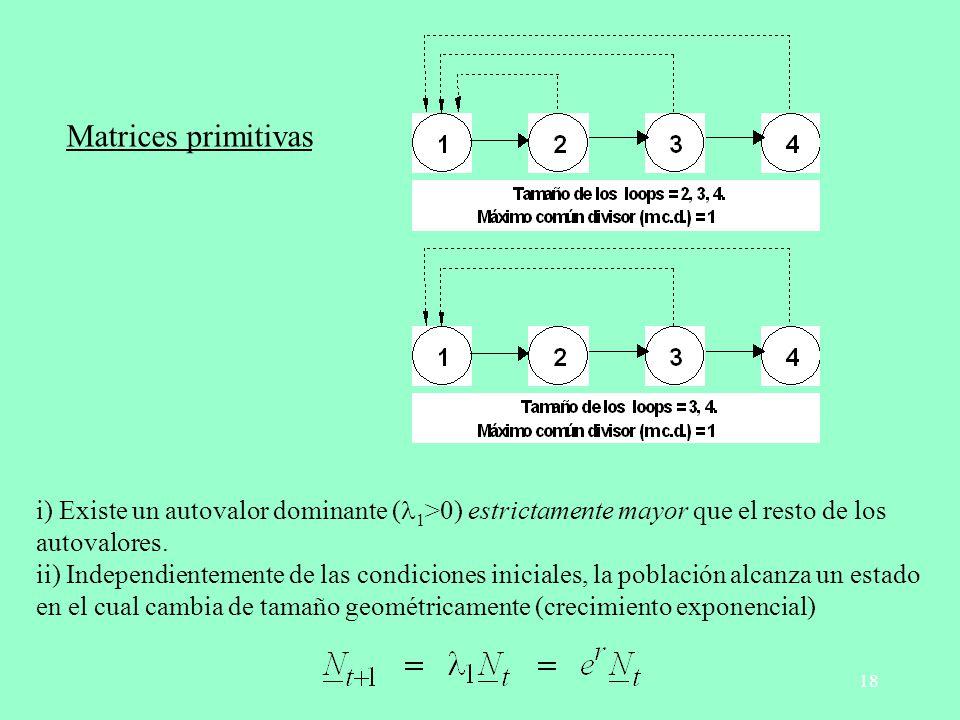 Matrices primitivas i) Existe un autovalor dominante (l1>0) estrictamente mayor que el resto de los autovalores.