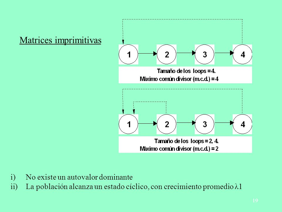 Matrices imprimitivas
