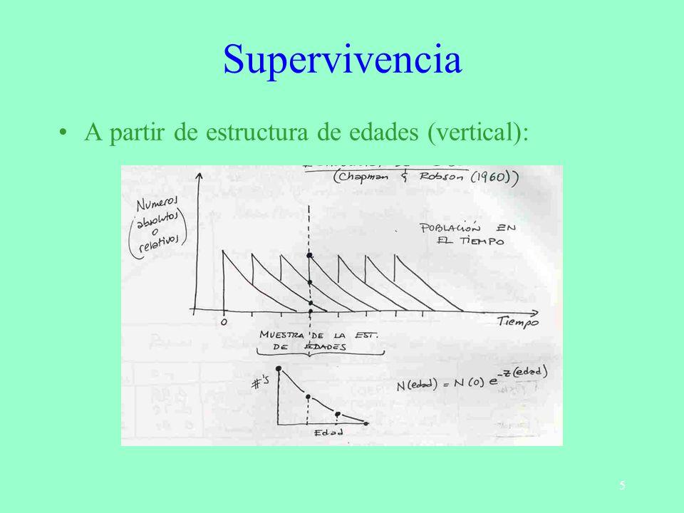 Supervivencia A partir de estructura de edades (vertical):