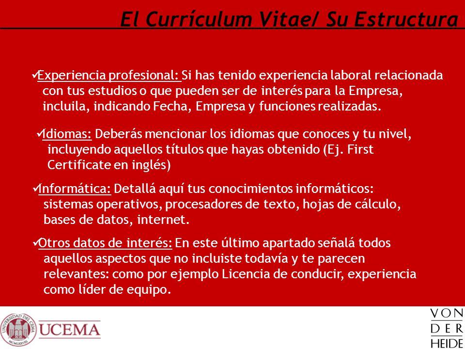 El Currículum Vitae/ Su Estructura