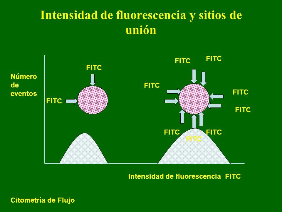 Intensidad de fluorescencia y sitios de unión