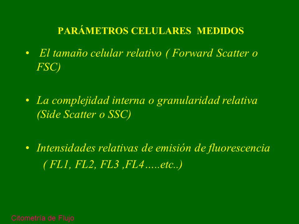 PARÁMETROS CELULARES MEDIDOS