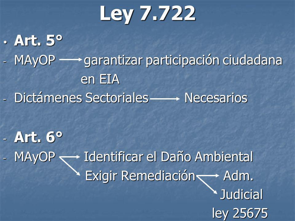 Ley 7.722 Art. 5° Art. 6° MAyOP garantizar participación ciudadana