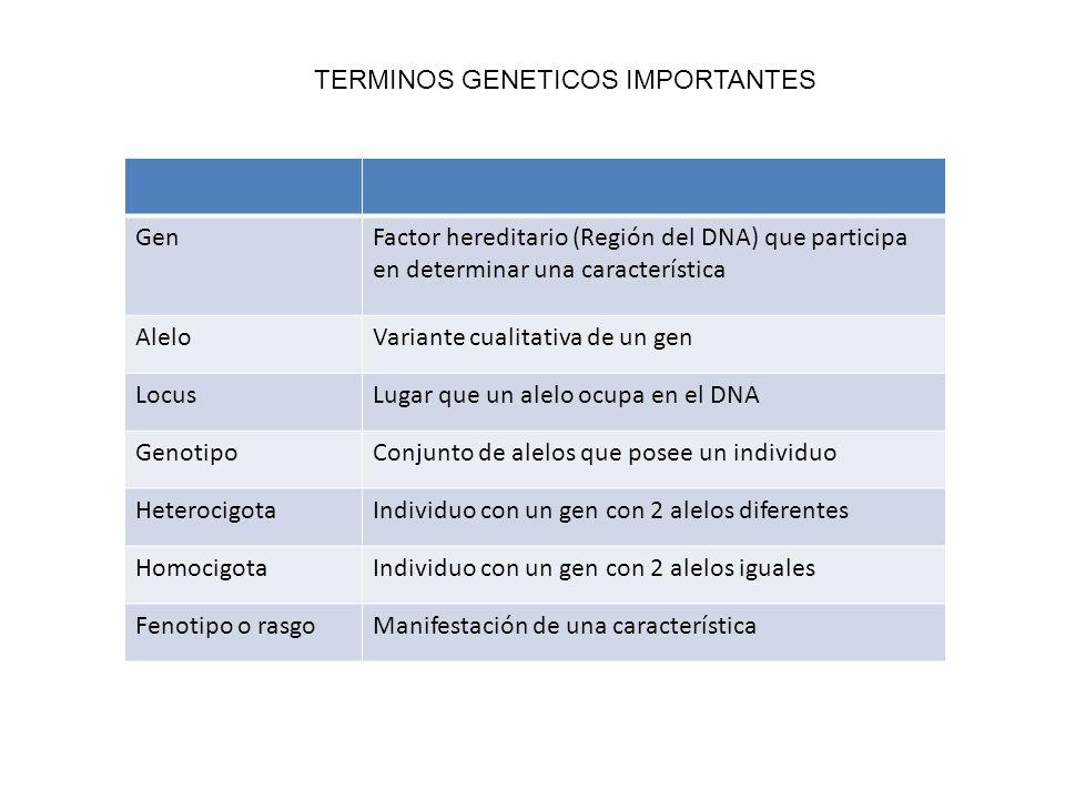 TERMINOS GENETICOS IMPORTANTES