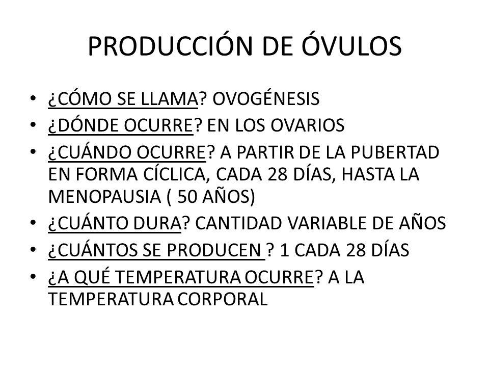 PRODUCCIÓN DE ÓVULOS ¿CÓMO SE LLAMA OVOGÉNESIS