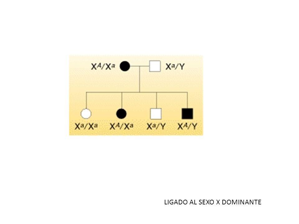 LIGADO AL SEXO X DOMINANTE