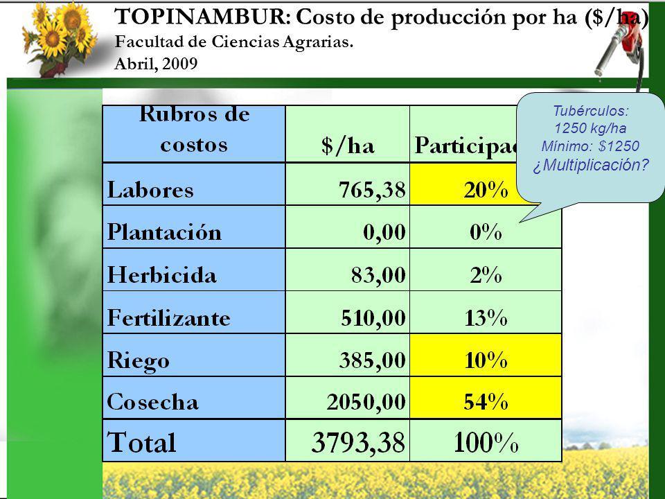 TOPINAMBUR: Costo de producción por ha ($/ha)