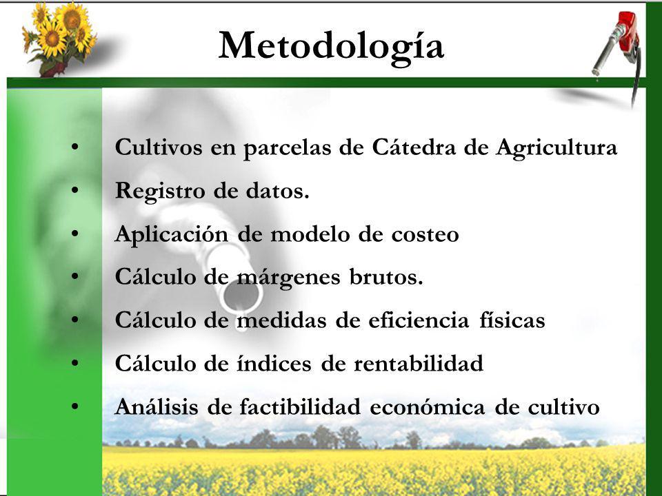 Metodología Cultivos en parcelas de Cátedra de Agricultura