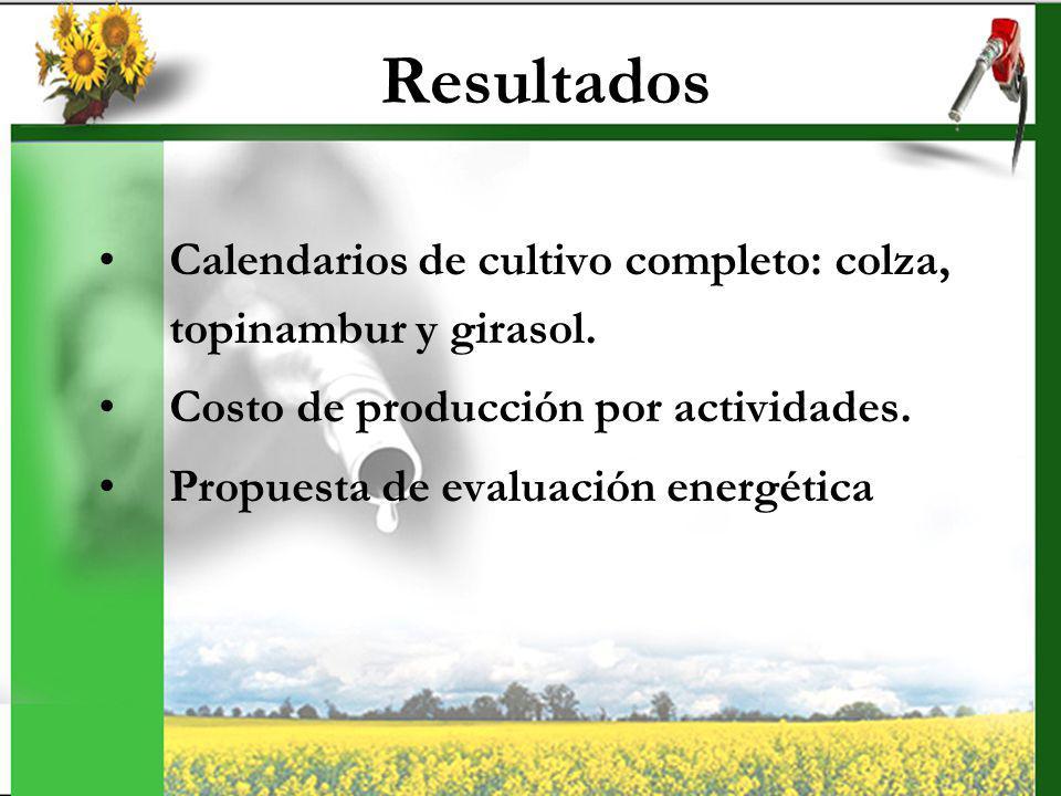 Resultados Calendarios de cultivo completo: colza, topinambur y girasol. Costo de producción por actividades.