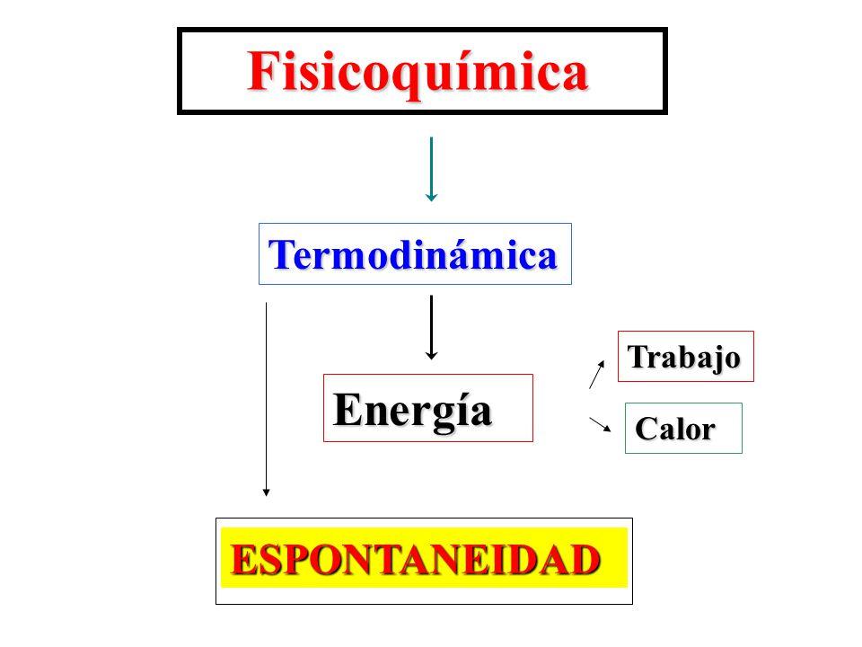 Fisicoquímica Termodinámica Trabajo Energía Calor ESPONTANEIDAD