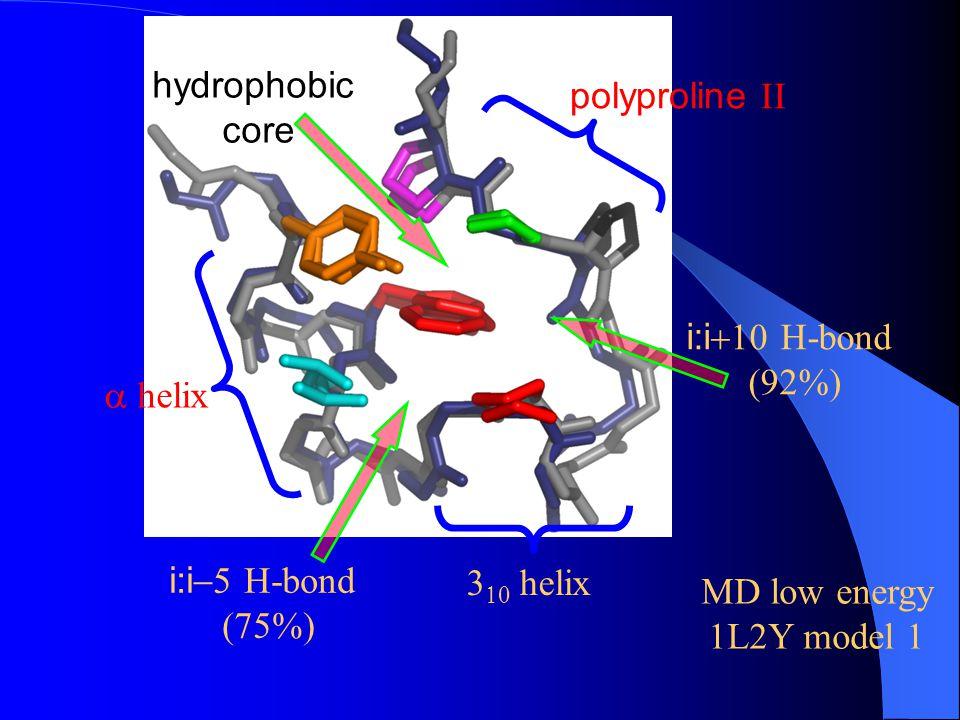 hydrophobic core. polyproline II. i:i+10 H-bond. (92%) a helix. i:i-5 H-bond. (75%) 310 helix.
