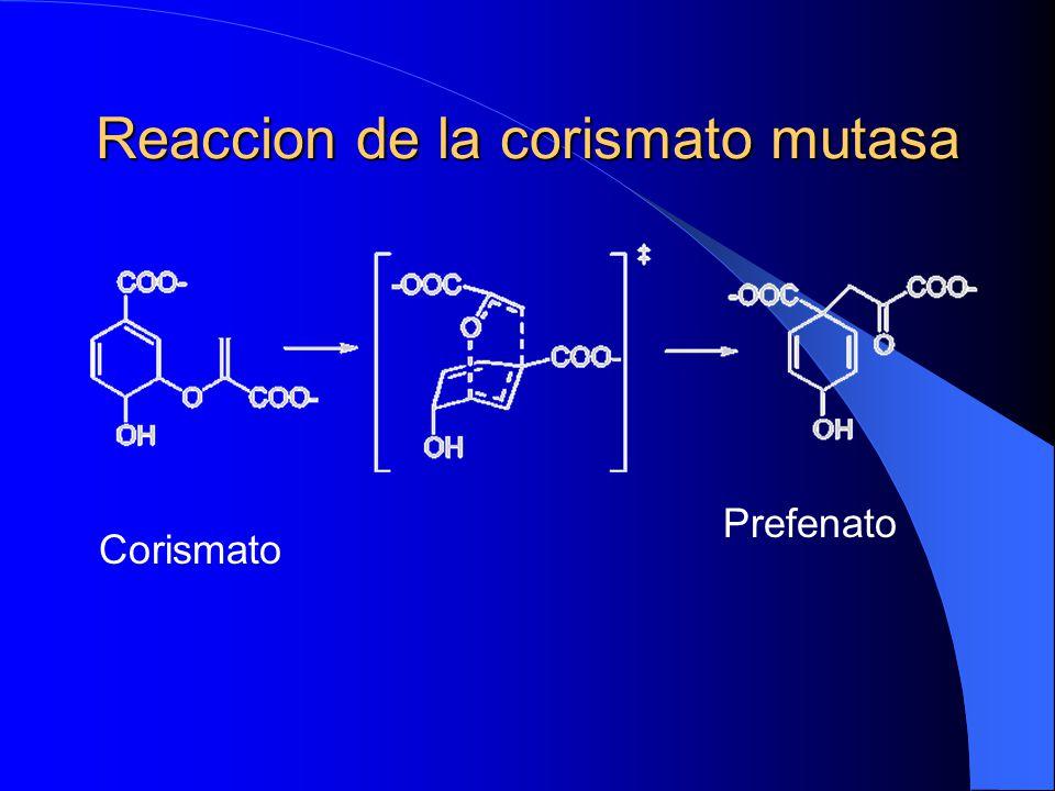 Reaccion de la corismato mutasa