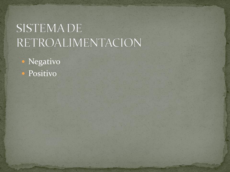 SISTEMA DE RETROALIMENTACION
