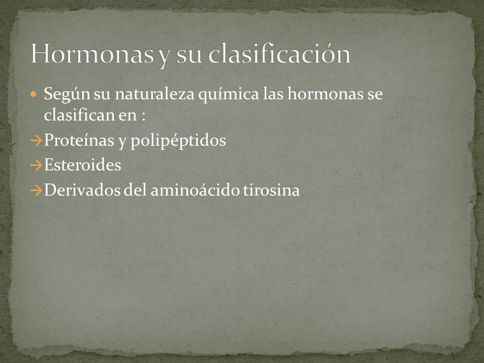 Hormonas y su clasificación
