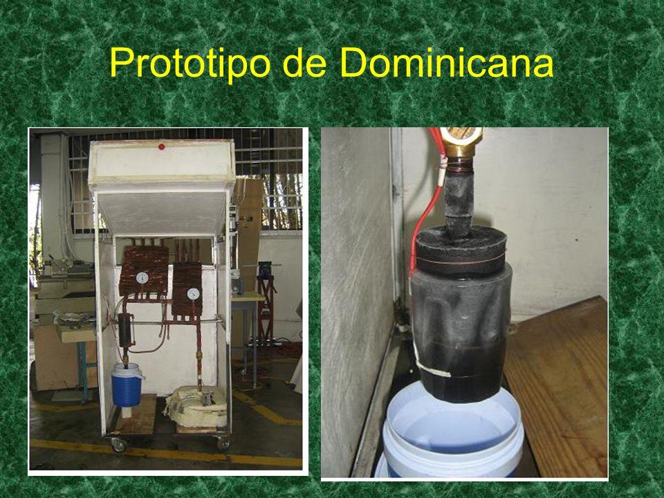 Prototipo de Dominicana