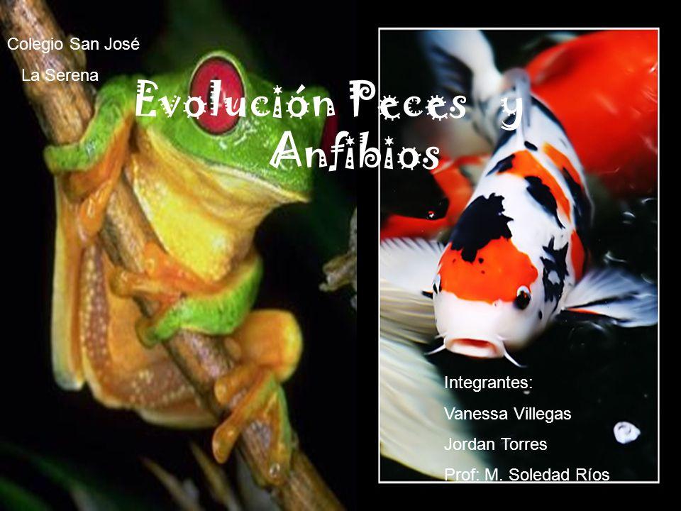 Evolución Peces y Anfibios