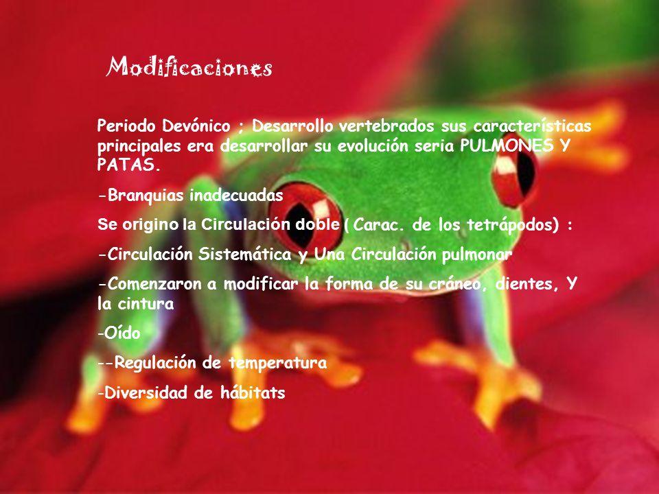 ModificacionesPeriodo Devónico ; Desarrollo vertebrados sus características principales era desarrollar su evolución seria PULMONES Y PATAS.