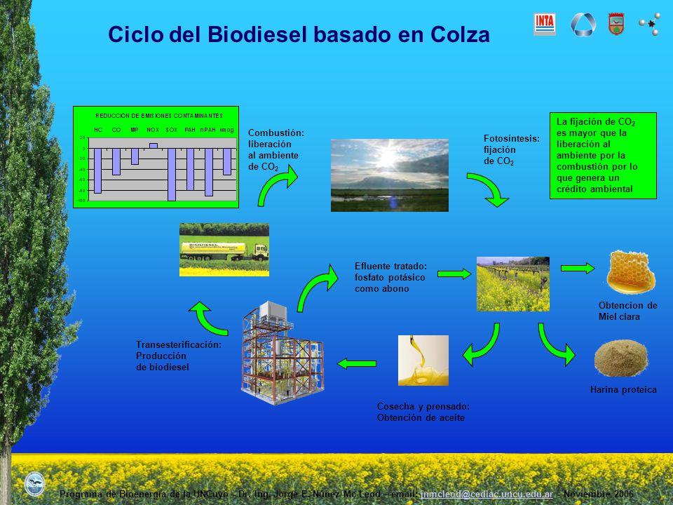 Ciclo del Biodiesel basado en Colza