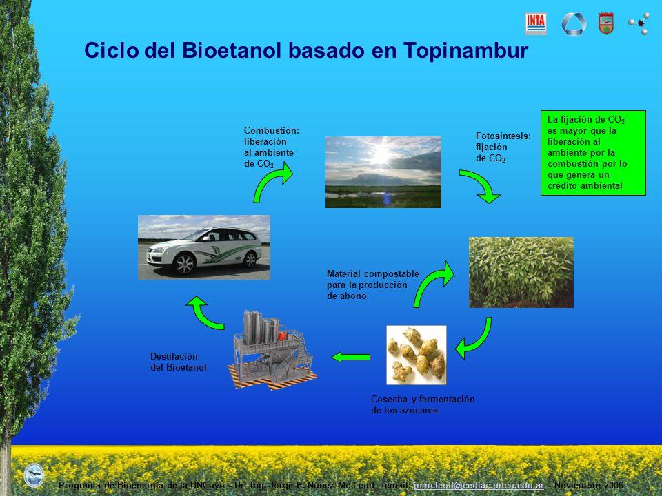 Ciclo del Bioetanol basado en Topinambur