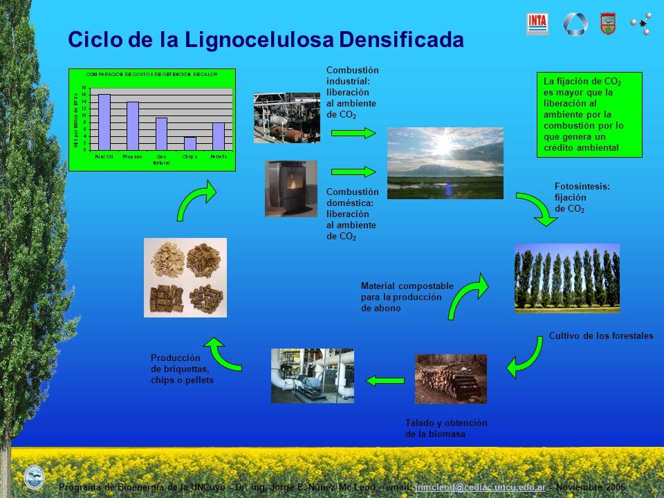 Ciclo de la Lignocelulosa Densificada