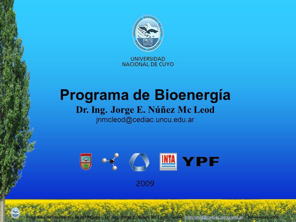 Programa de Bioenergía Dr. Ing. Jorge E. Núñez Mc Leod