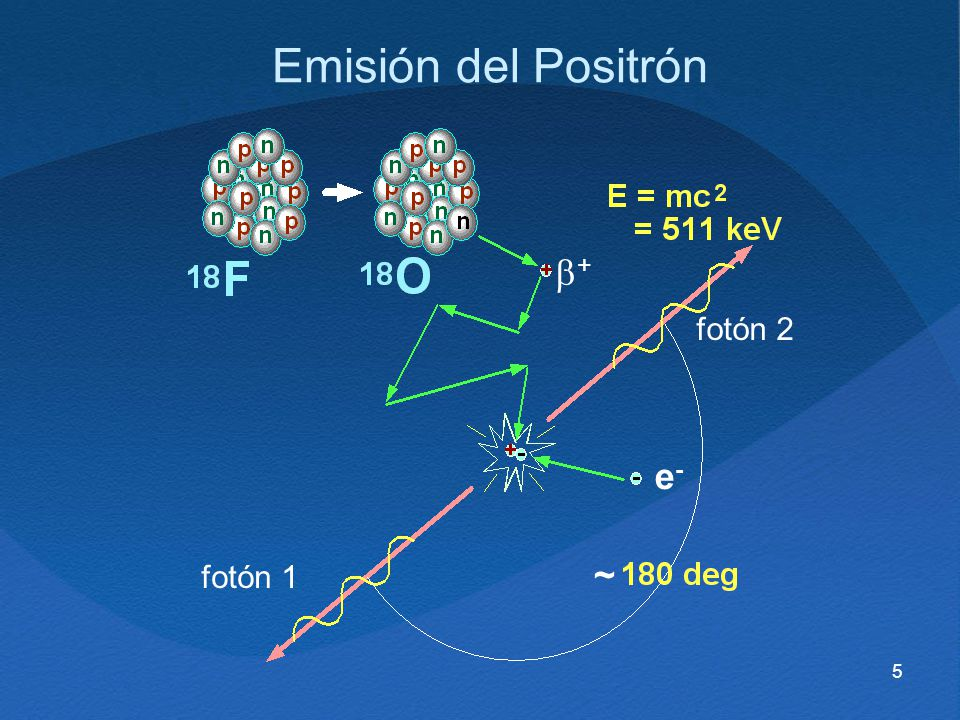 Emisión del Positrón b+ fotón 2 e- fotón 1 ~