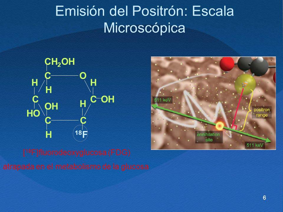 Emisión del Positrón: Escala Microscópica
