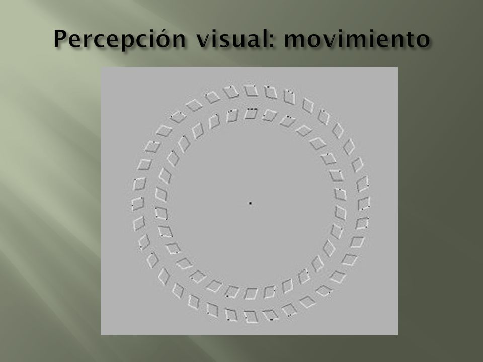 Percepción visual: movimiento