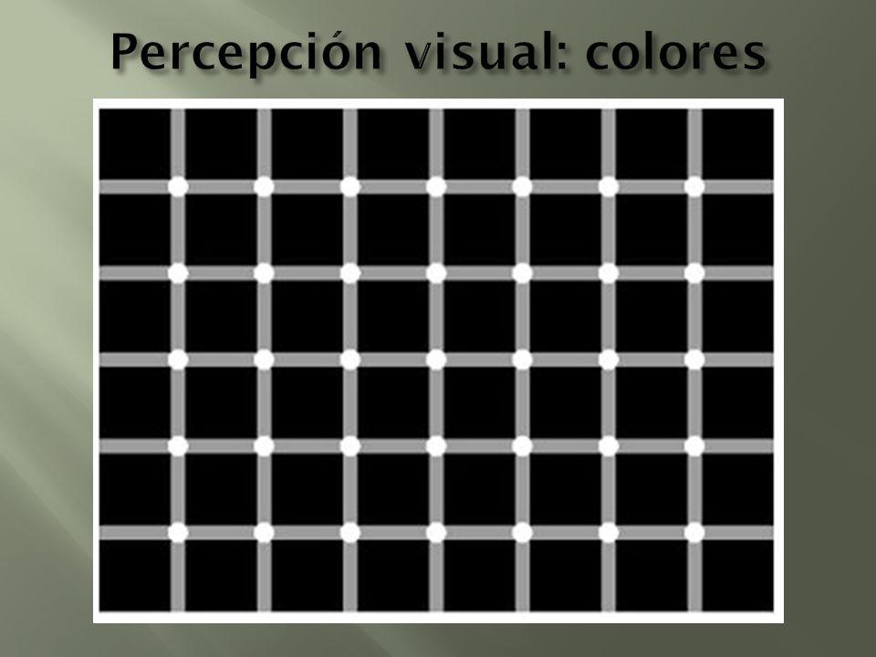 Percepción visual: colores