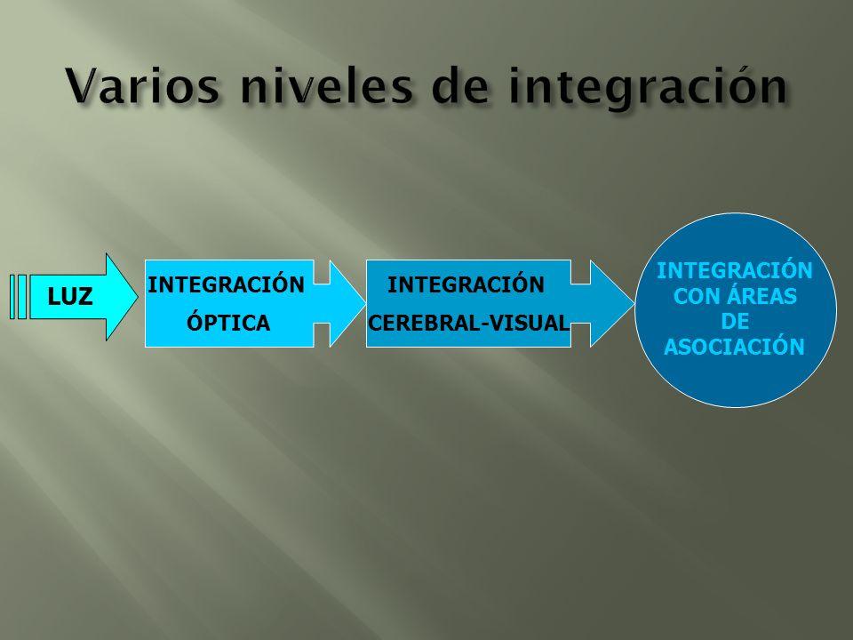 Varios niveles de integración