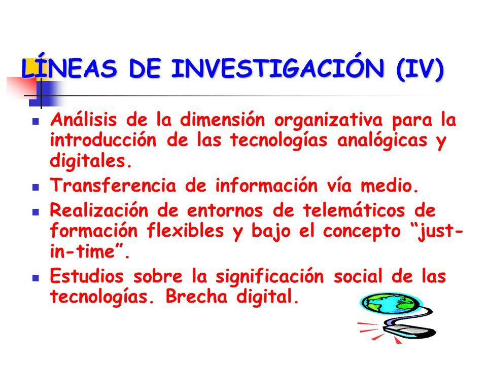 LÍNEAS DE INVESTIGACIÓN (IV)