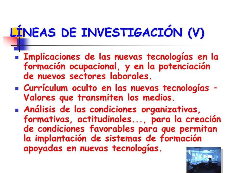 LÍNEAS DE INVESTIGACIÓN (V)