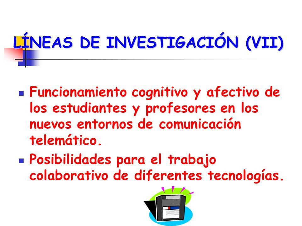 LÍNEAS DE INVESTIGACIÓN (VII)