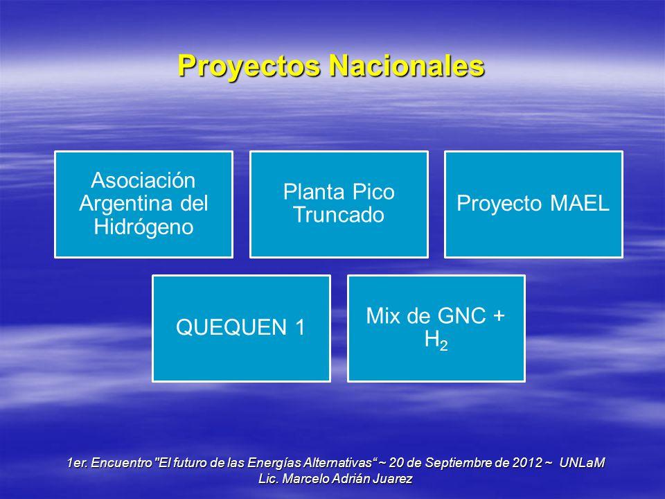 Proyectos Nacionales Asociación Argentina del Hidrógeno