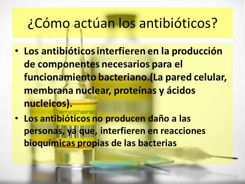 ¿Cómo actúan los antibióticos