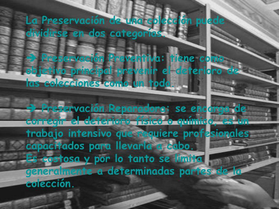 La Preservación de una colección puede dividirse en dos categorías.