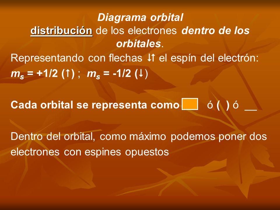 distribución de los electrones dentro de los orbitales.