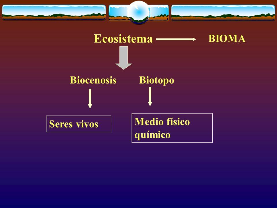 Ecosistema BIOMA Biocenosis Biotopo Medio físico químico Seres vivos