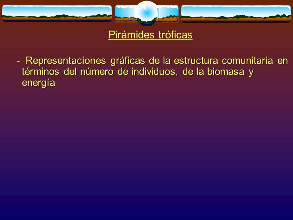 Pirámides tróficas - Representaciones gráficas de la estructura comunitaria en términos del número de individuos, de la biomasa y energía.