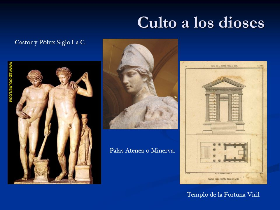 Culto a los dioses Castor y Pólux Siglo I a.C. Palas Atenea o Minerva.