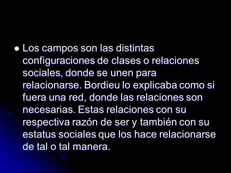 Los campos son las distintas configuraciones de clases o relaciones sociales, donde se unen para relacionarse.