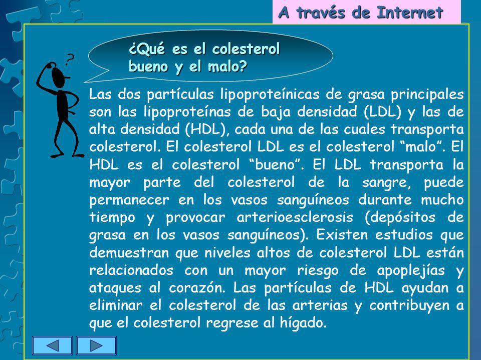 A través de Internet ¿Qué es el colesterol bueno y el malo