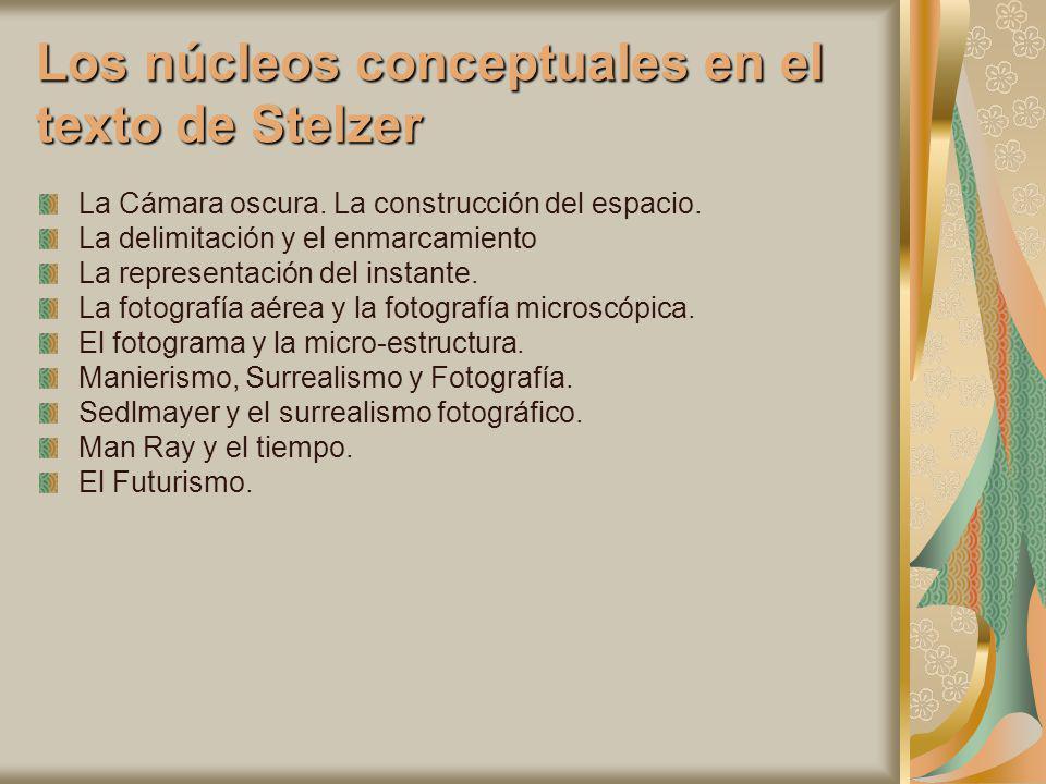 Los núcleos conceptuales en el texto de Stelzer